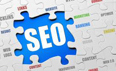 Search Engine Optimisation Services with Traffic Driver